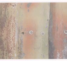 rusty planet by jemima jones