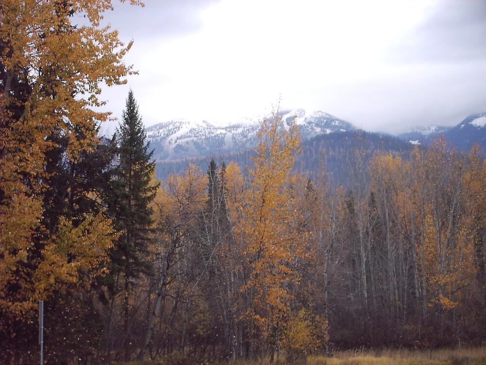 Big Mountain , Whitefish Montana by baloo