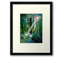 Go Toward The Light Framed Print