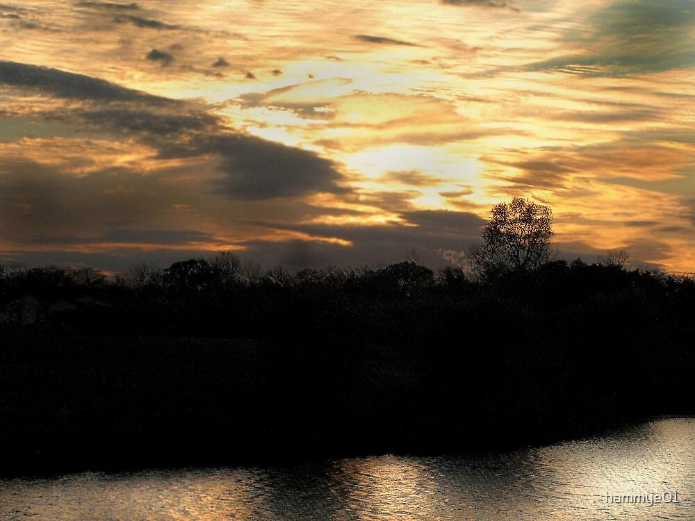 Spectacular Sunset by hammye01
