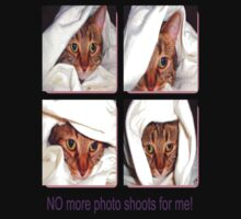 No More Photo Shoots by Dmarie Frankulin