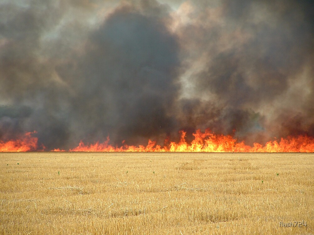 Field fire by flash724