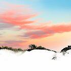 Dune Sunset by Nicola Morgan
