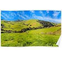 Green Meadow, Santa Ynez valley, CA Poster