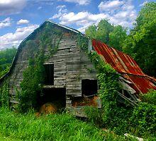 Rough Around the Edges ~ Spring by Lisa G. Putman