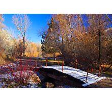 Waking Up To Winter Photographic Print