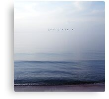 birds flying over the sea Canvas Print