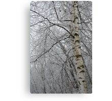 Its Snow Time of Year Canvas Print