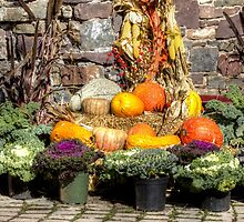 From The Good Earth - A Fruitful Harvest by MotherNature