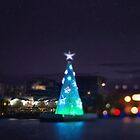 Geelong Floating Christmas Tree by Chris Fawkes
