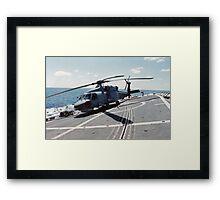 Seahawk Hanging On Framed Print