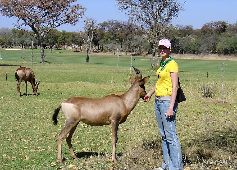 Wildlife by Ansie Botha