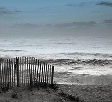 Carolina Dream by TNRidrnr