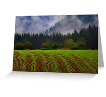 Young Crops Greeting Card