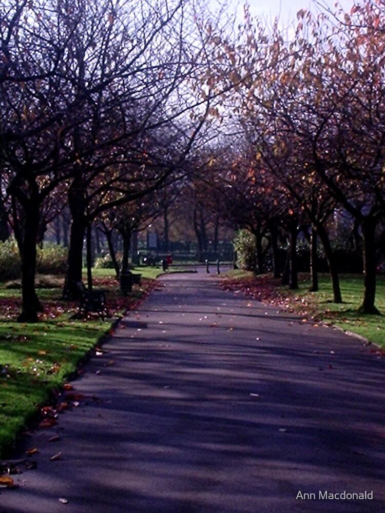 Autumn in park by Ann Macdonald