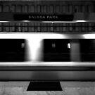 Balboa Park by Ian  James