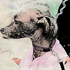 "Chinese Crested Dog ""Sorry"" ~ Greeting Card by Susan Werby"