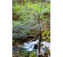 Upper Brandy Creek Falls Photographic Print