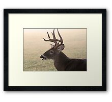 Kinda Foggy, Huh? Framed Print