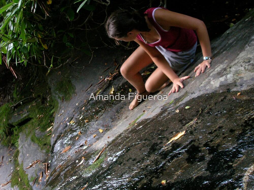 Stream walking by Amanda Figueroa