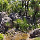 Mt Dale - WA by rom01