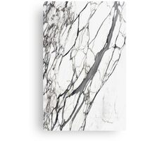 White marble iphone case Canvas Print