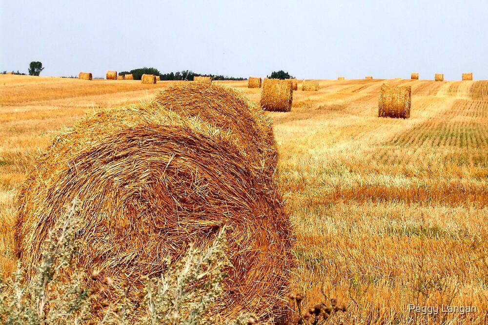 Harvest Treasures by Peggy Langan