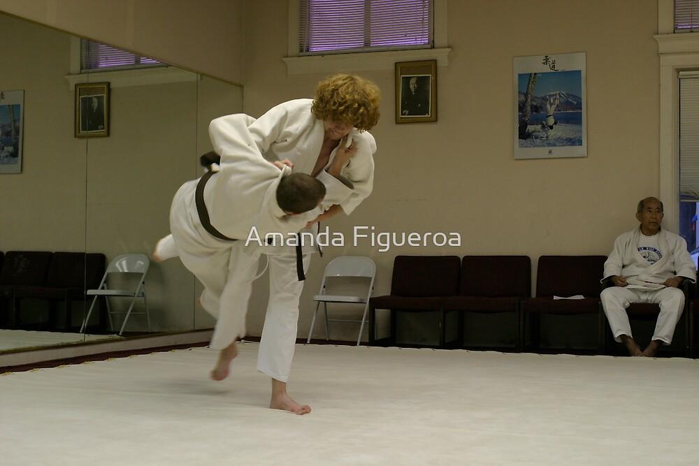 Lessons in Judo by Amanda Figueroa