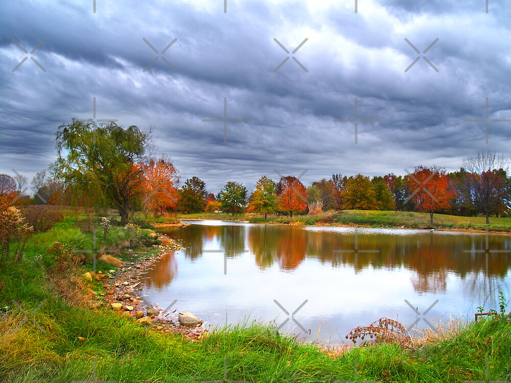 Moody Sky In Fall by pinkarmy25