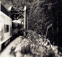 Alaska Railroad by SwainPhotography