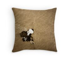 Ice Berg Throw Pillow