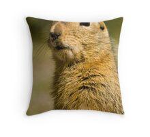 Arctic Ground Squirrel 2 Throw Pillow
