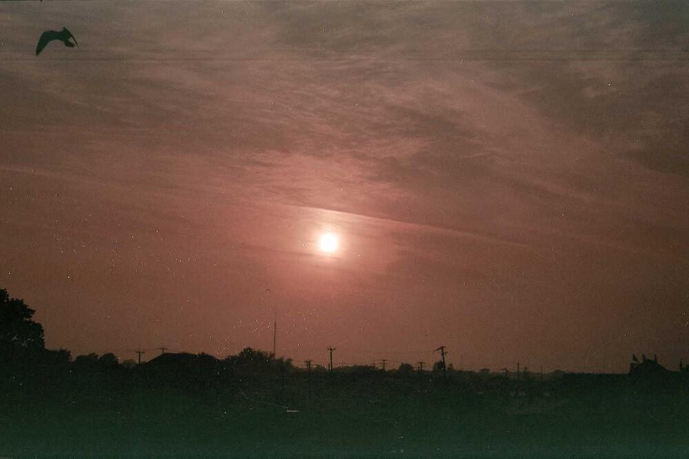 Sunrise by mkpshay