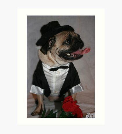 All Dressed Up And Nowhere To Go! Art Print