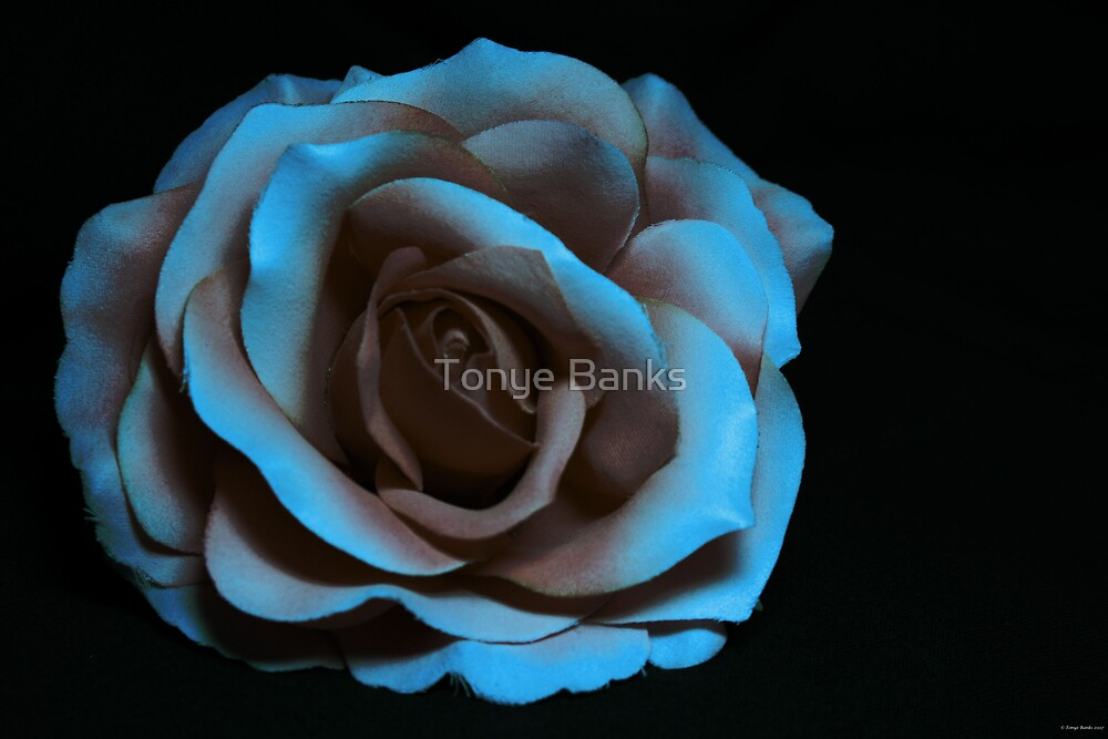 Lonely or Loved by Tonye Banks