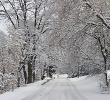 Vineland Rd. Winter 2006 by TheoFro3