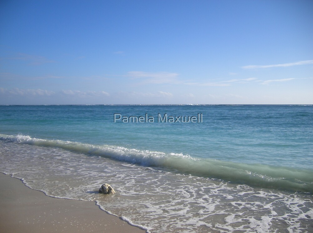 The Sea Side by Pamela Maxwell