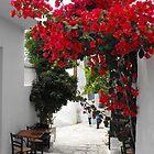 Greek Island street and flowers 1 by SlavicaB