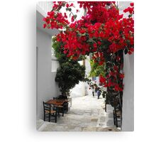 Greek Island street and flowers 1 Canvas Print