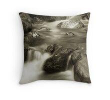 Brandy Creek1 Throw Pillow