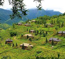 Houses on the Hill - Sa Pa, Vietnam. by Tiffany Lenoir