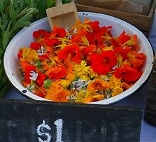 Edible Flowers at the Heritage Foods Expo by Betty Mackey