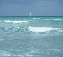 Sailboat in a storm, Florida USA by SlavicaB