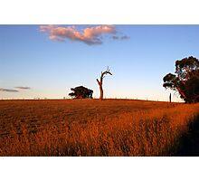 Sunburnt Australia Photographic Print
