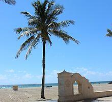 Hollywood Beach, Florida by SlavicaB