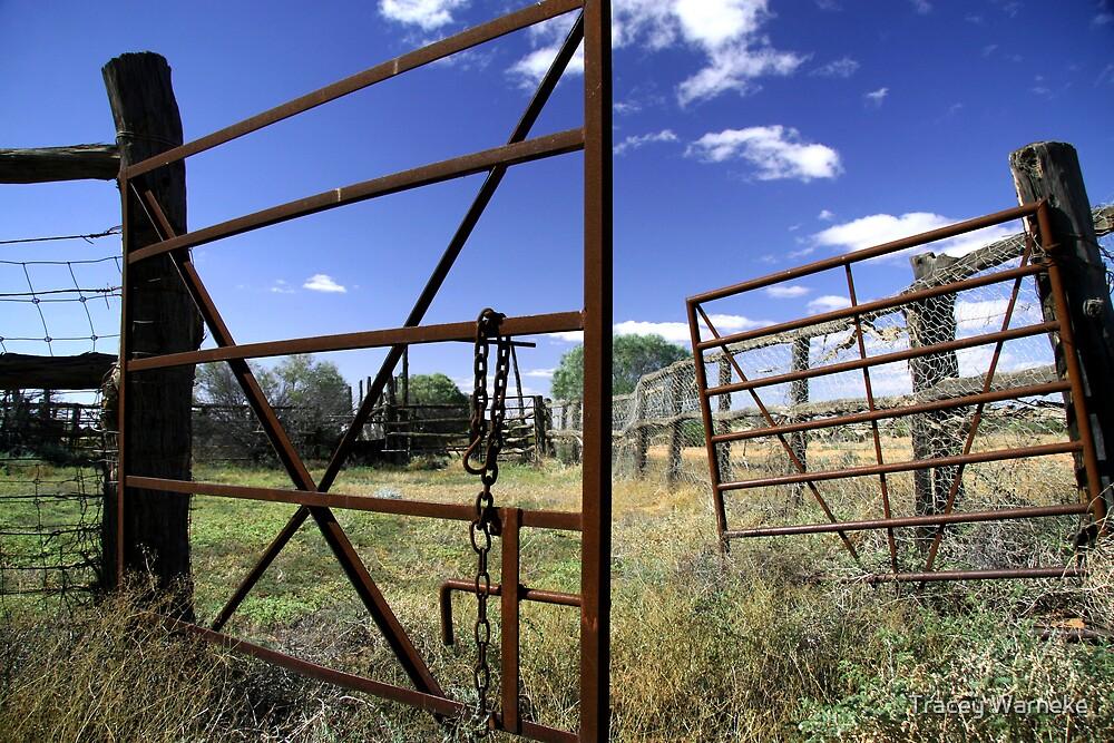 Old cattleyards by Tracey Warneke