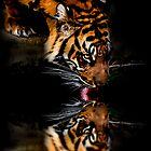 Mirror Image by Cheri  McEachin