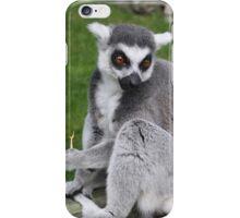 Photogenic Lemur iPhone Case/Skin