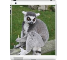Photogenic Lemur iPad Case/Skin