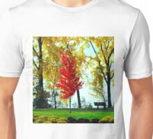 Autumn, red tree near lake Unisex T-Shirt